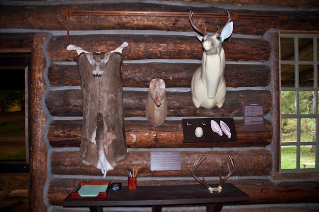Shelburn Museum 13
